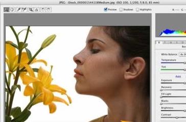 Adobe Camera Raw(RAW文件处理工具) v9.5 官方最新版